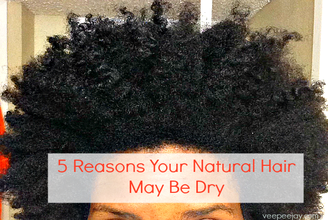 Reason Why Natural Hair May Be Dry