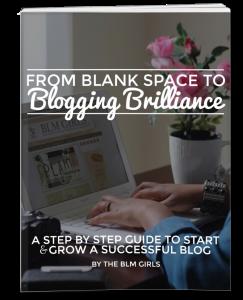 Blogging-Brilliance-Book-VeePeeJay